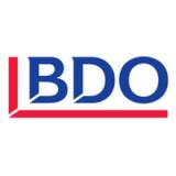 BDO Partners
